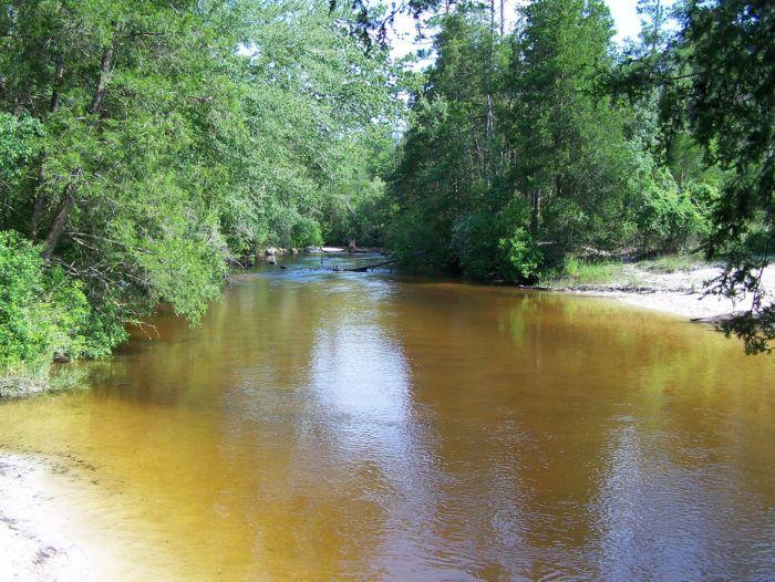 8. Blackwater River State Park, Holt