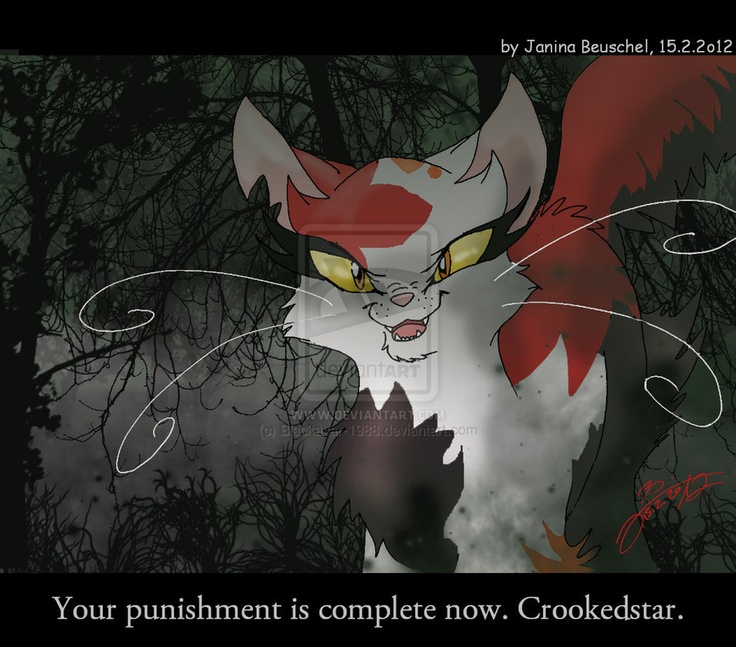 16 Best Crookedstar Images On Pinterest