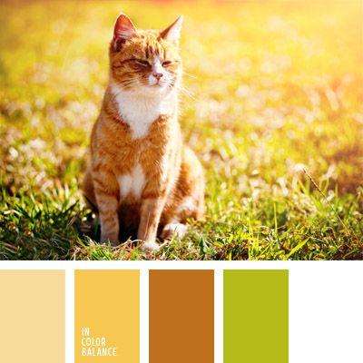 amarillo, color amarillo soleado, color día soleado, color gato rojizo, color verde hierba, color verde pradera, colores para la decoración, colores vivos y soleados, marrón, marrón rojizo, paletas de colores para decoración, paletas para un diseñador, rojizo.