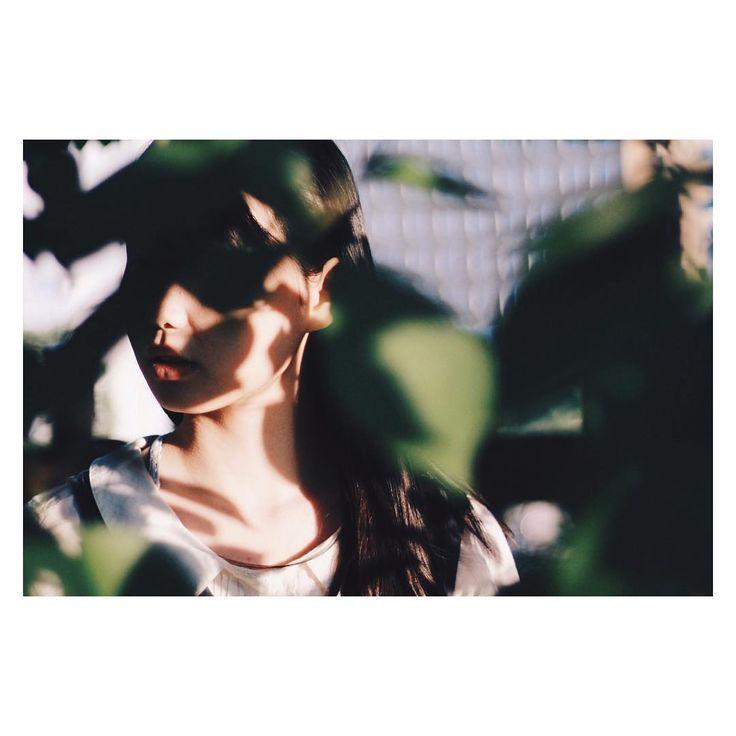"Instagram의 笹님: ""夏の影 #film #filmphoto #35mm #photo #potrait #photographer #フィルム #ポートレート #followme #被写体 #model"""