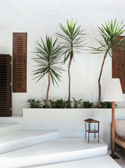 white walls, wood shutters, plants, lantern