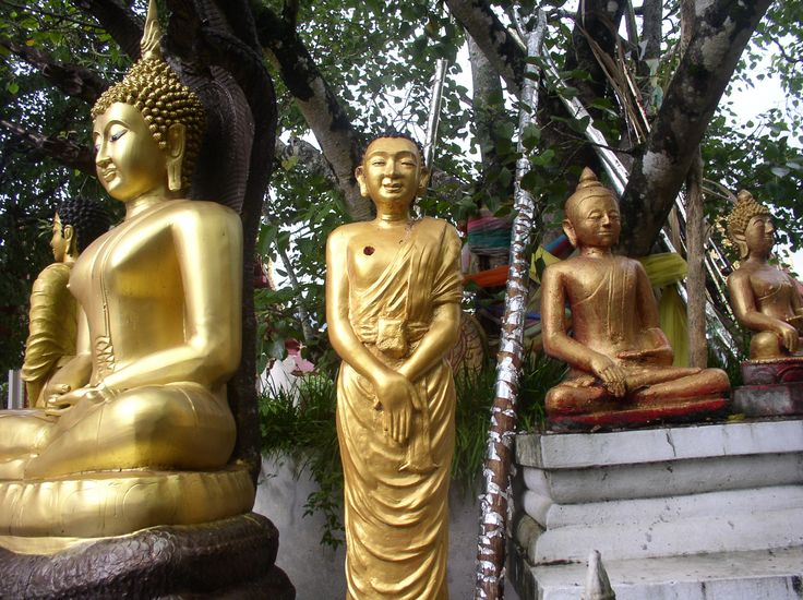 DIMENSION #7: Material. Buddhism is not a religion with very few material representations and idols. These include sacred statues and sacred idols such as the bodhi tree.