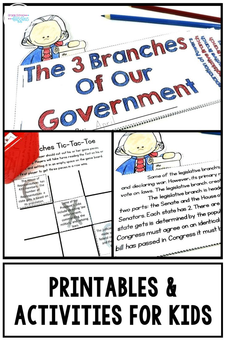 A Three Branches Of The Government Mini Book And Activity