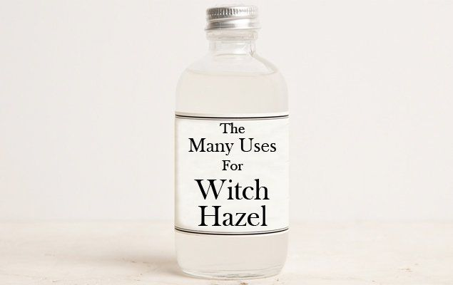The Many Uses for Witch Hazel