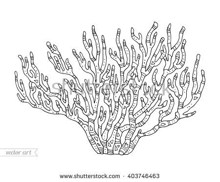 coral isolated coral reef vector illustration zentangle coral coloring book page for - Coral Coloring Pages