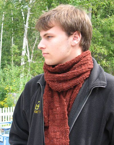 527 Best Knit Scarf Patterns Images On Pinterest Free Knitting