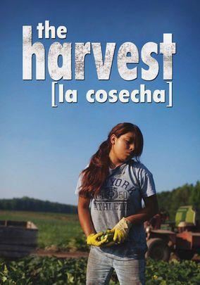 The Harvest [la cosecha]. Show while reading Esperanza Rising?