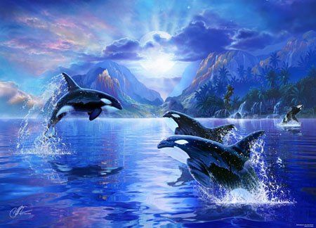 640 best dolphins and whales images on pinterest for Alex cherry flying whales wall mural