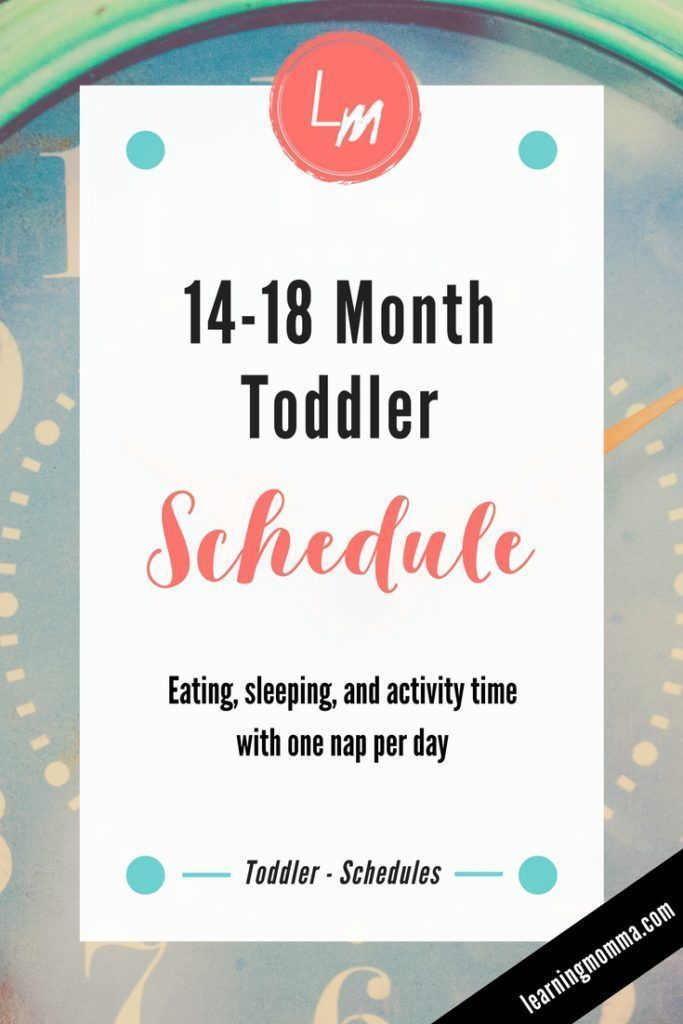 14-18 Month Toddler Schedule - Daily Routine With One Nap. Looking for an  example of when your toddler should nap, eat, and go to bed?
