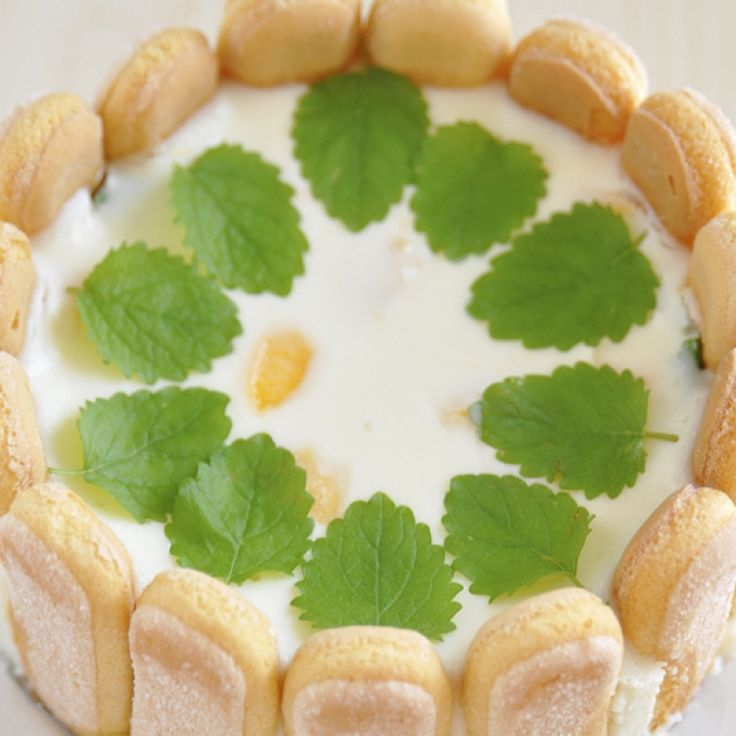 This cheesecake with ladyfingers recipe is a light and refreshing ...