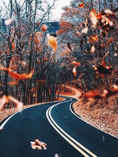 best 25 fall backgrounds iphone ideas on pinterest
