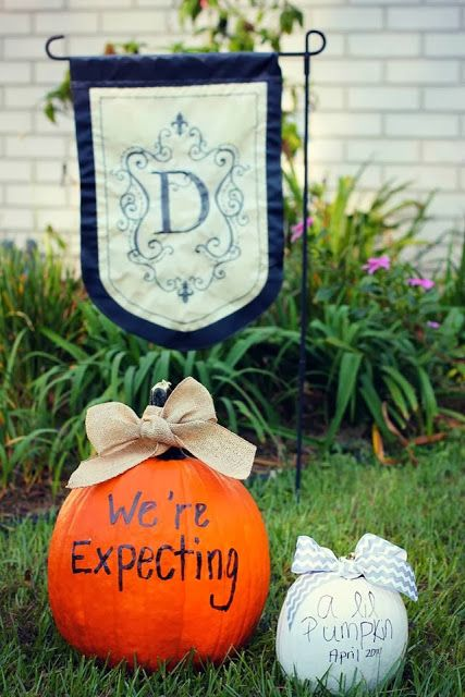 We're expecting a lil' pumpkin - Pregnancy Announcement