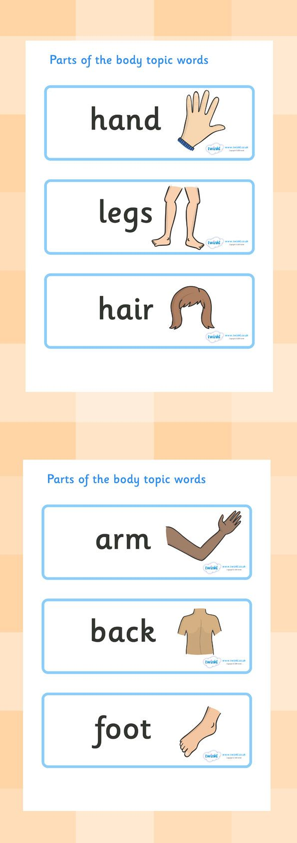 Twinkl Resources  Parts of the Body Topic Words   Classroom printables for Pre-School, Kindergarten, Elementary School and beyond! Topics, Ourselves, Human Body, Word Cards