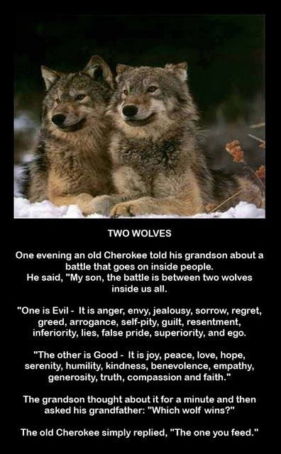 Two Wolves - Cherokee Proverb