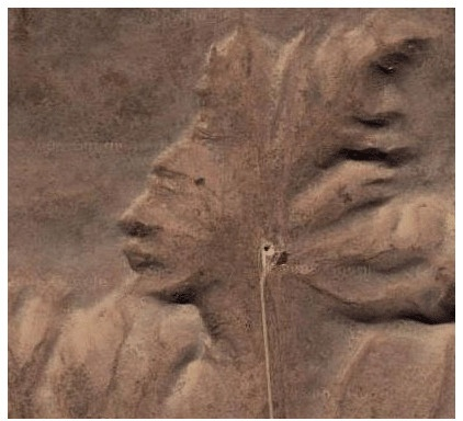 Nothing out in the open can hide from Google Earth's prying lenses -- like this Indian Giant, replete with headdress and iPod earphone, naturally carved in Canadian clay.