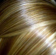 Blonde brown Hair Color