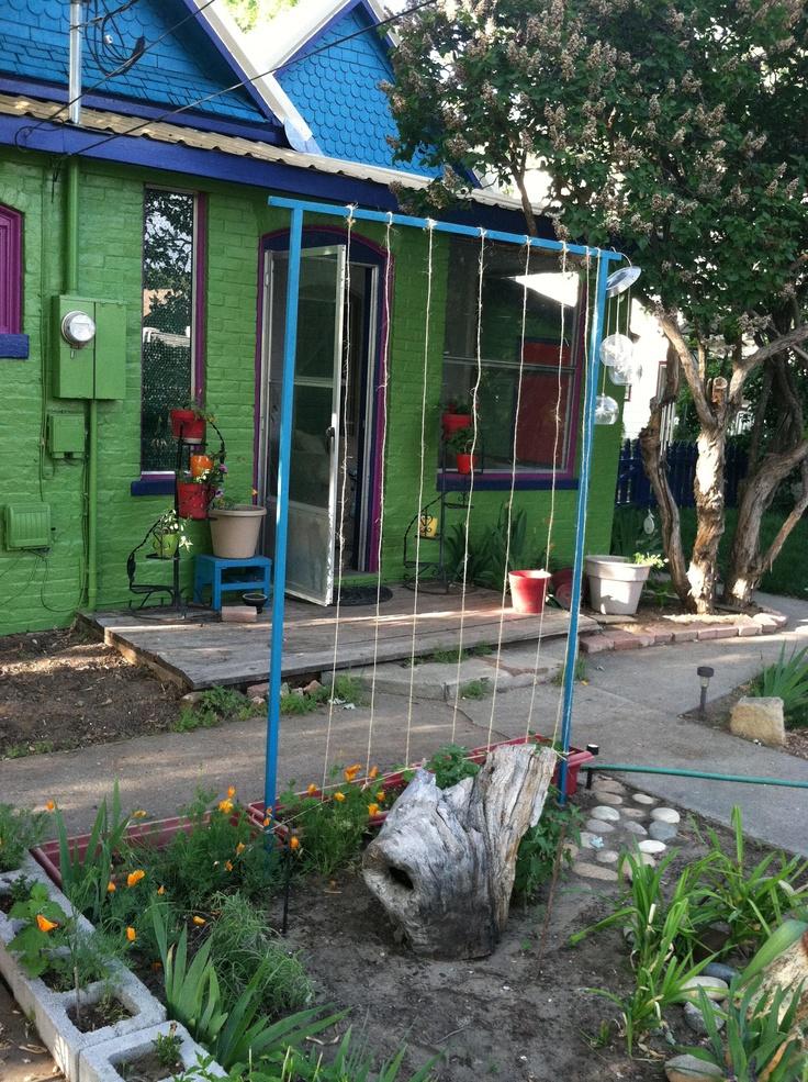 Growing a More Health Friendly Garden
