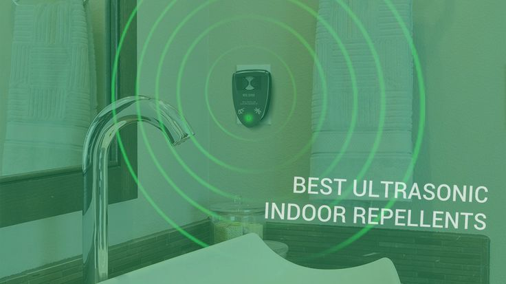 The best indoor ultrasonic mosquito repellents are great alternative to insect sprays, zappers, and other insecticides.
