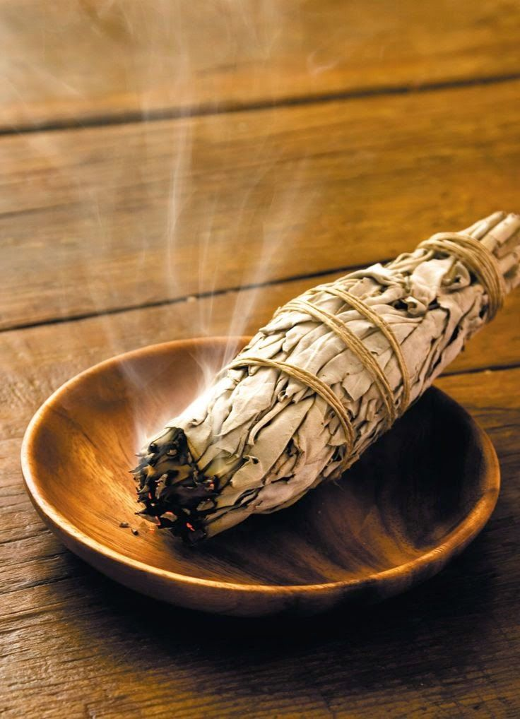 Burning Sage will repel mosquitos and other pests. It smells heavenly, and avoids exposure to toxic chemicals. Like and Repin. Noelito Flow instagram http://www.instagram.com/noelitoflow