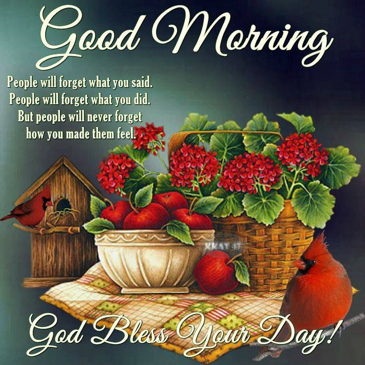Good Morning, God Bless Your Day!!