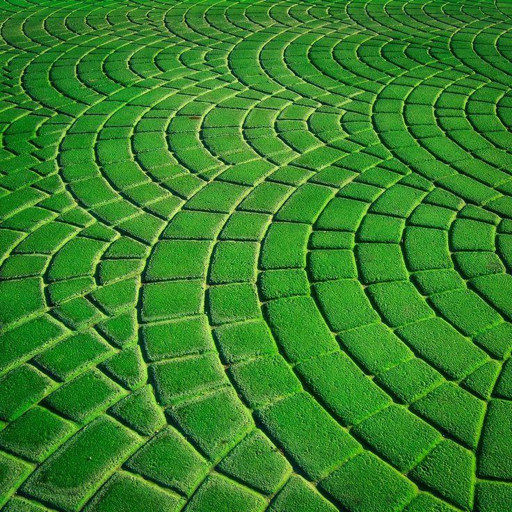 Green | Grün | Verde | Grøn | Groen | 緑 | Emerald | Colour | Texture | Style | Form | Pattern | Waves by MR26Photo