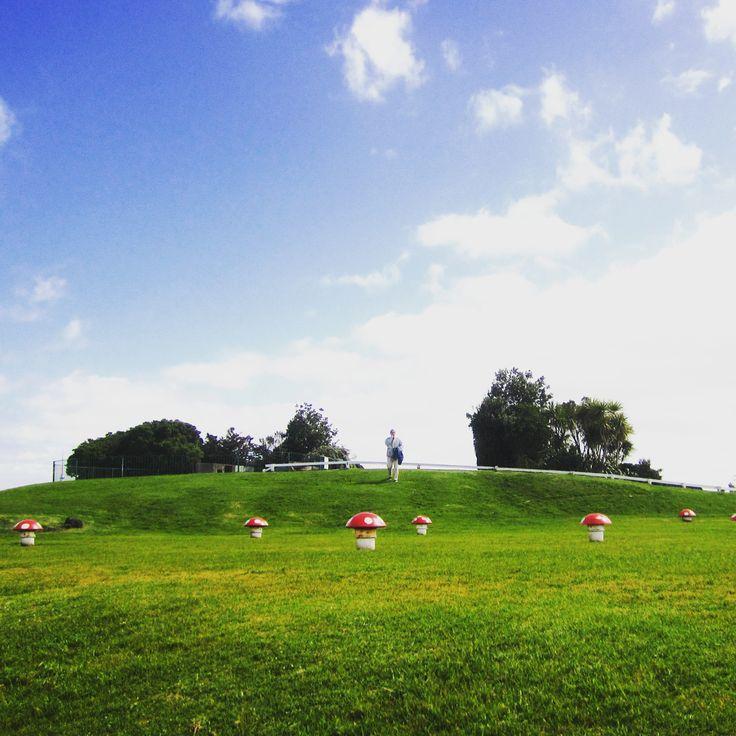#Picnic spot with a #view. Devonport, Auckland, NZ.  @natgeo @bestvacations #beautifuldestinations #beautifulplaces @travelawesome #travel#the#world #throwback #wanderlust #missing#nz @purenewzealand #nzmustdo @visitauckland