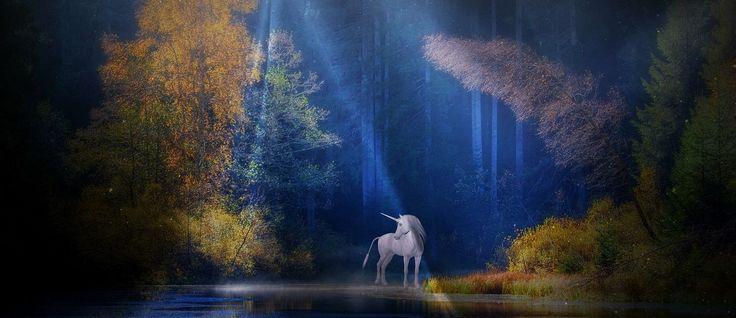 National Unicorn Day: Honouring Scotland's national animal – Life ...