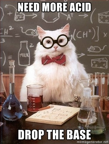 In love with this chemistry cat. #chemmajor