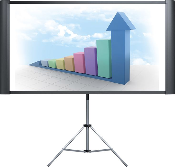 "Epson - Duet 80"" Portable Projector Screen - Black, ELPSC80"