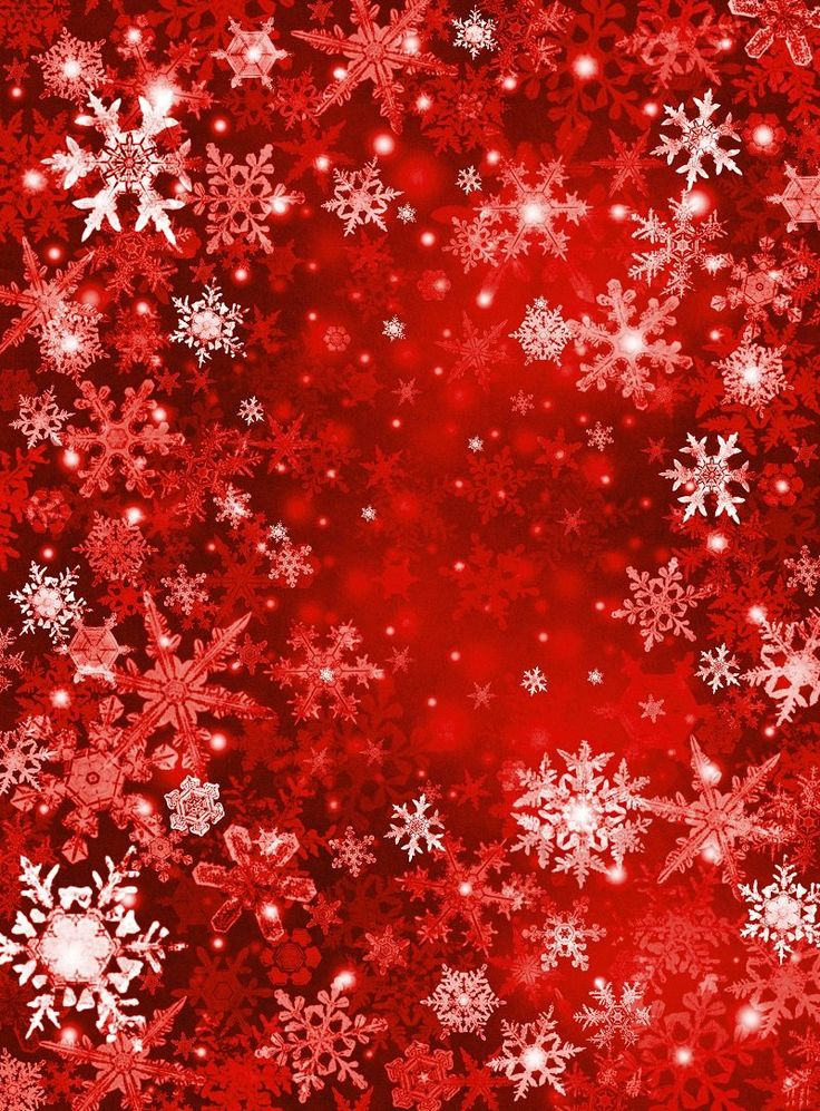 Kate Red Snowflake Winter holiday Christmas Backdrops Photos sd-115