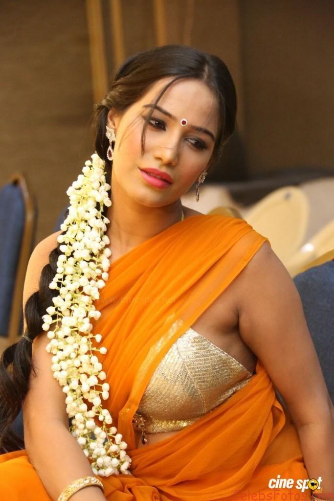Poonam Pandey Hot Photos In Transparent Saree
