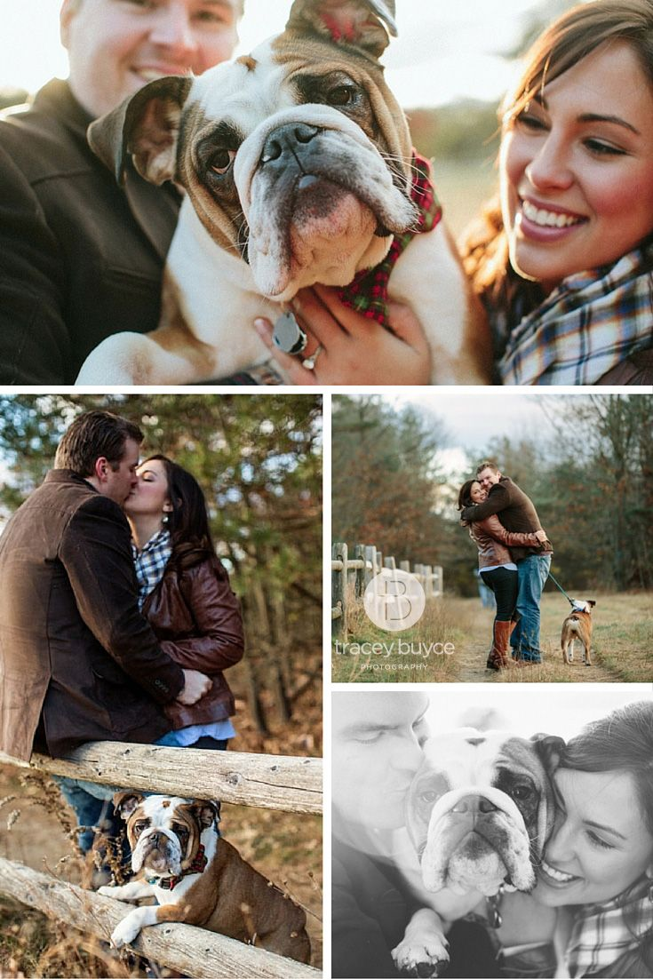 Fall engagement photos with dog | bulldog | Tracey Buyce Photography #engagement