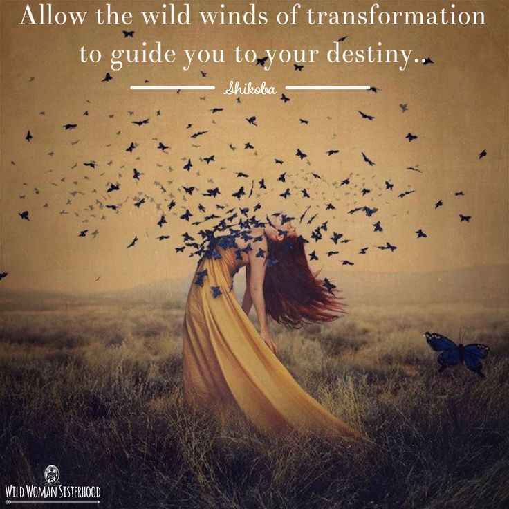 Allow the wild winds of transformation to guide you to your destiny ~ Shikoba…