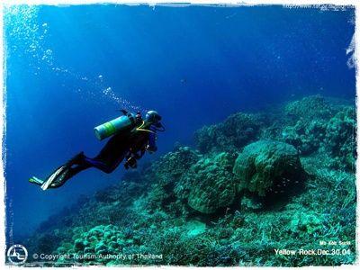 หมู่เกาะ สุรินทร์ http://travel.mthai.com/news/3452.html