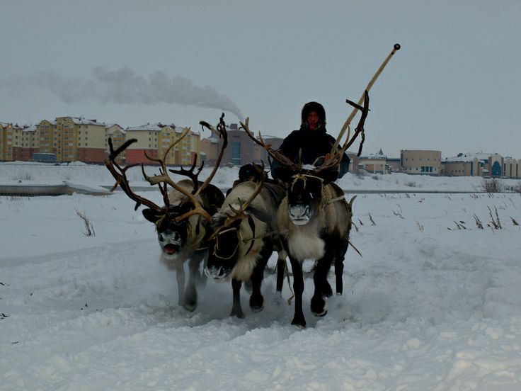 Salekhard - a City in the Russian North on the Polar Circle