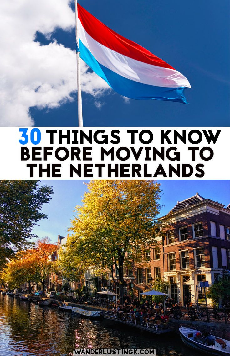 How to Move to the Netherlands How to Move to the Netherlands new foto