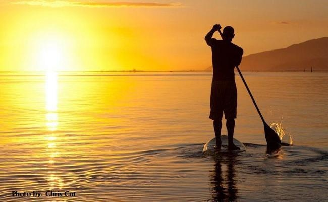 19 Best Images About Stand Up Paddle Board Lessons San Diego On Pinterest