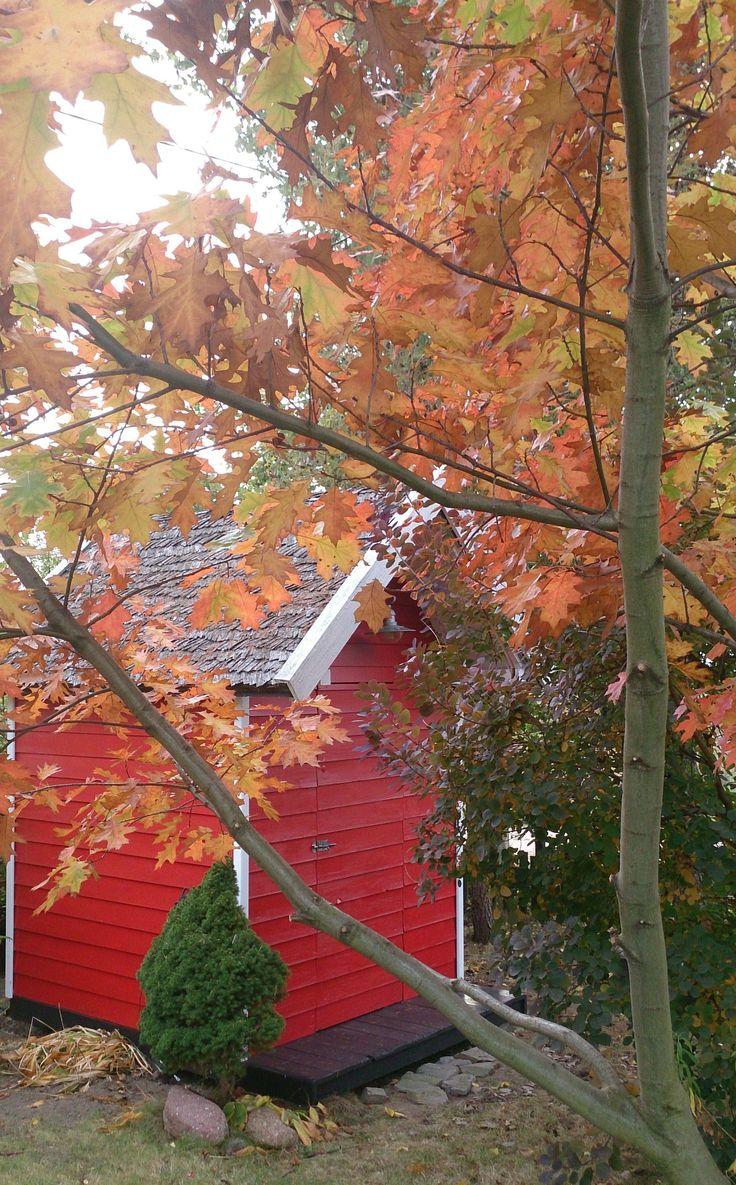 Domek na narzędzia może być ozdobą ogrodu. Projekt: Joanna Paszko Ochotny Homestyling