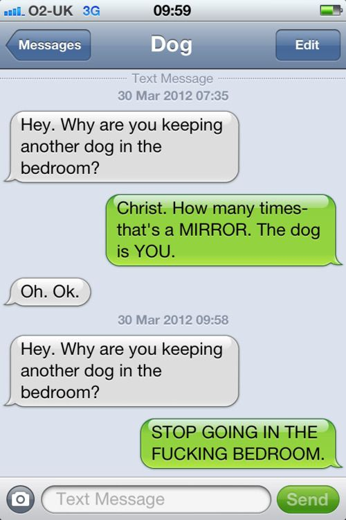 """If you havent read """"Texts From My Dog"""", you are truly missing out on some funny"""