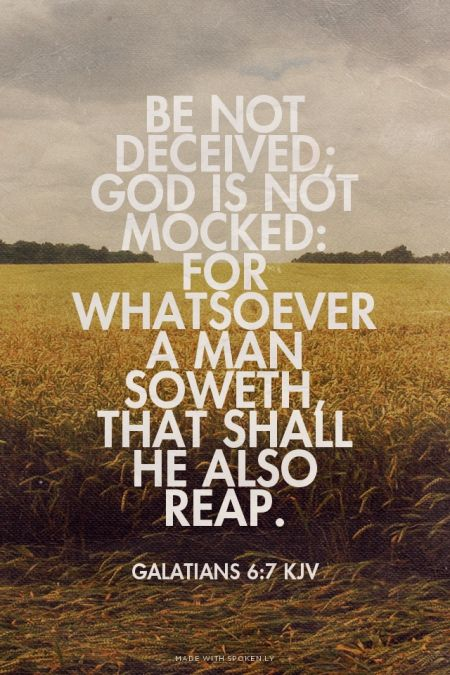 Be not deceived; God is not mocked: for whatsoever a man soweth, that shall he also reap. - Galatians 6:7 KJV | Shasta made this with Spoken.ly