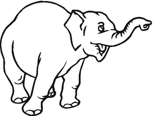 Keren 30 Gambar Kartun Gajah Di 2020 Halaman Mewarnai Kartun Gajah