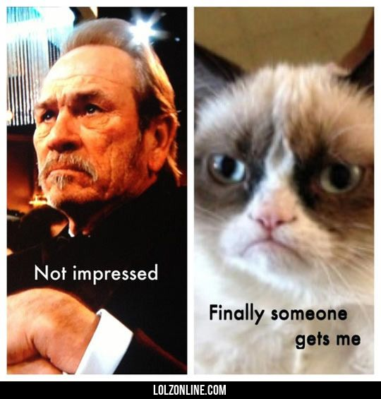 Not impressed… #lol #haha #funny