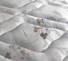Cómo eliminar el moho del colchón. Limpia tu colchón viscoelástica o de latex de la humedad y las manchas. Consejos para quitar el olor a humedad