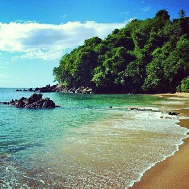 Best Places To Travel In September In The Caribbean: 180 Best Images About Trinidad And Tobago On Pinterest