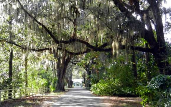 Nine ways ways to find the real Florida -- 15 minutes off I-75 :http://www.floridarambler.com/historic-florida-getaways/nine-ways-ways-to-find-the-real-florida-15-minutes-off-i-75/