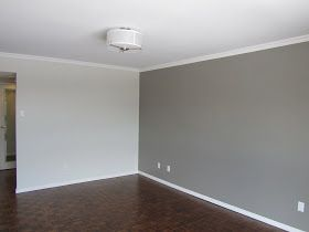 Elephant Skin Behr Paint Home Grey Accent Wall