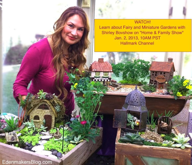 Home and garden show coupon fairy and miniature gardens on quothome amp familyquot show Home channel gardening