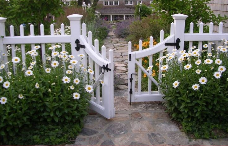 Wooden fences, despite being gorgeous and versatile, especially from the weather.