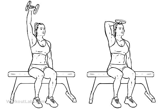 Seated Single Arm Overhead Dumbbell Tricep Extensions