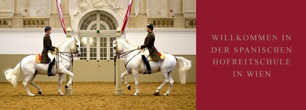 Spanische Hofreitschule : Spanische Hofreitschule  I will see at the Spainish Riding School  Dec 1 11:30-1:30